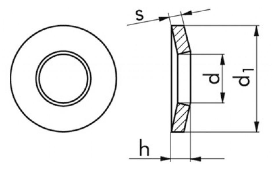 Sicherungsscheiben M5 DIN 6796 Edelstahl rostfrei A2